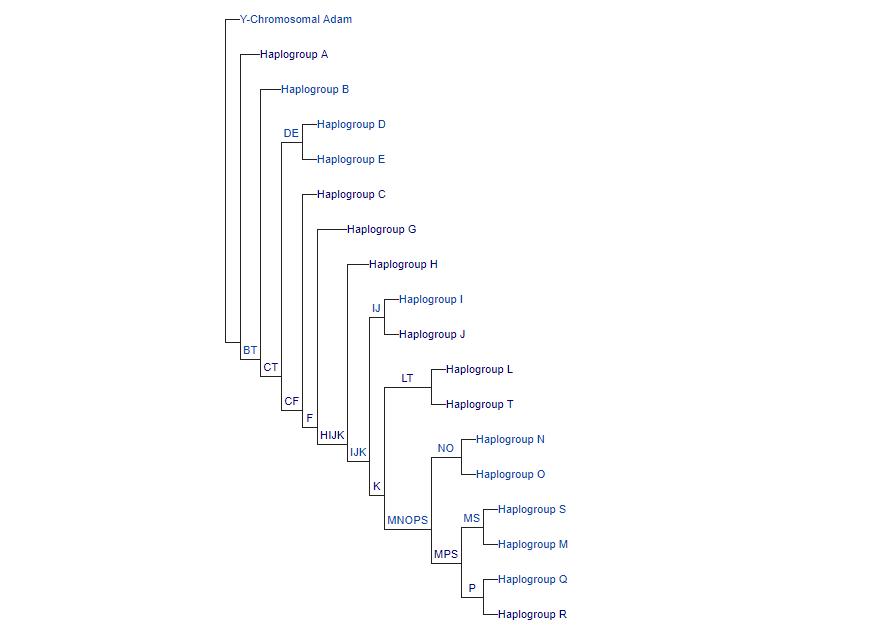 पूर्वज-परम्परा | Chiaroscuro Zeitgeist